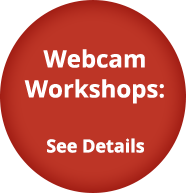 Webcam Workshops